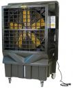 Охладитель воздуха Master BC 220 в Нижнем Новгороде